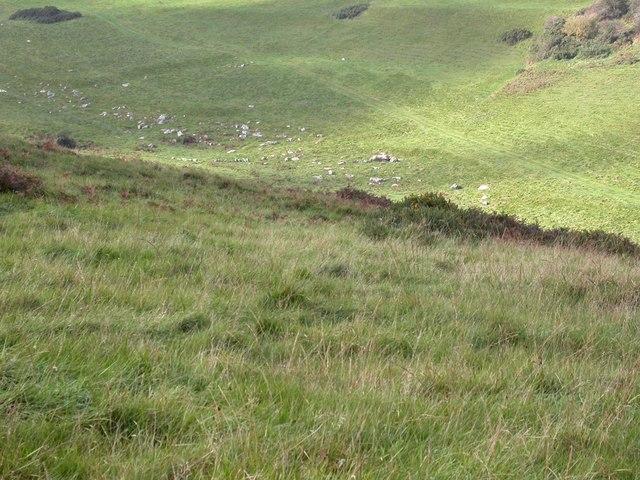 Valley of Stones, sarsons