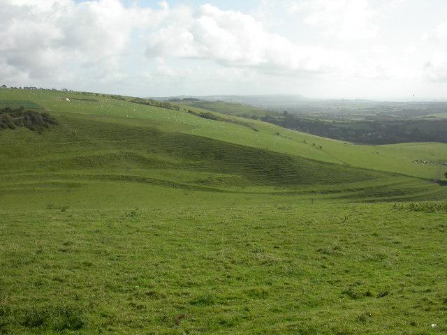 White Hill, downland