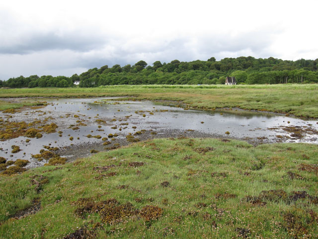Loch Creran saltings