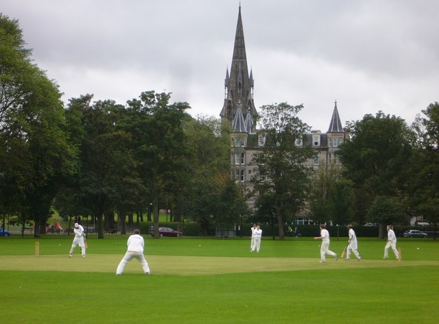 Cricket in the Meadows