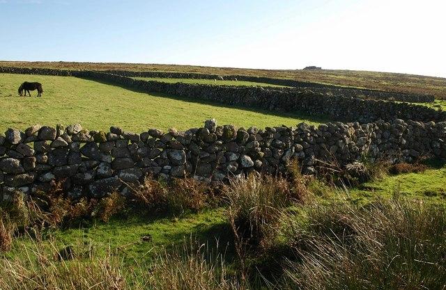 Walls, Trowlesworthy Warren