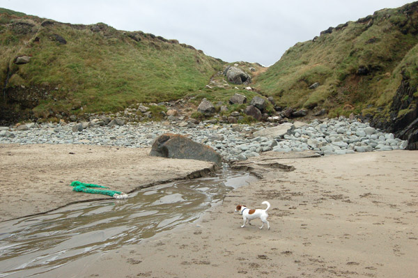 Stream discharging across Porthmelgan beach