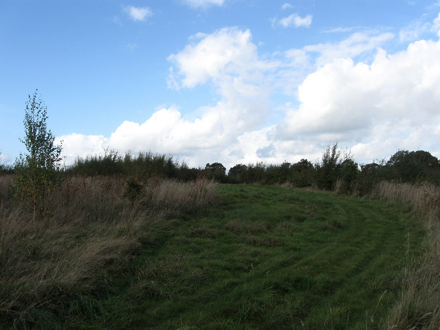 Further Beechy Field
