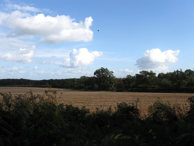 Site of Hundred Acre Wood