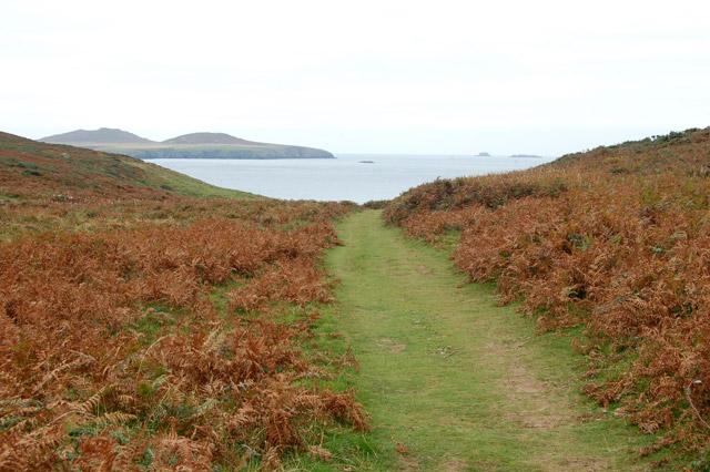 Coastpath towards St Davids Head