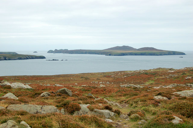Ramsey Island seen from the coastpath east of St Davids Head