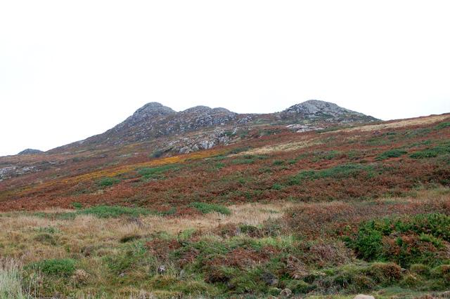 Moorland slope on the north side of Carn Llidi
