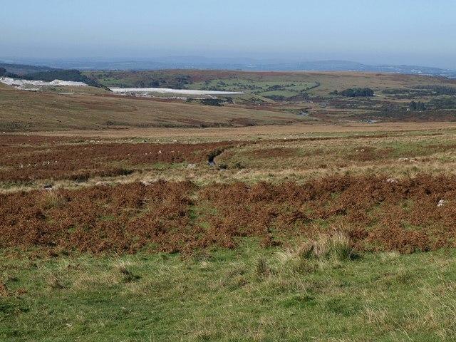 Moorland above Blacka Brook