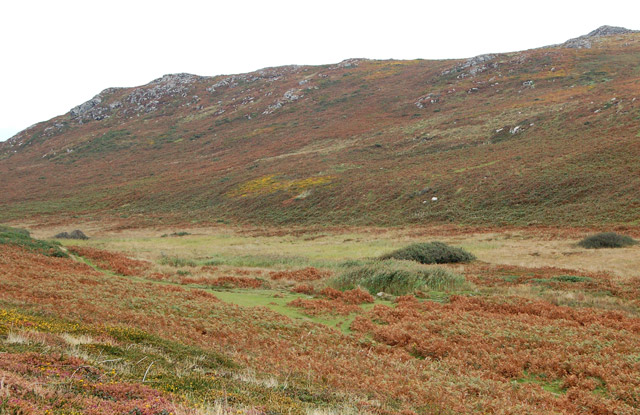 Moorland valley northwest of Carn Llidi