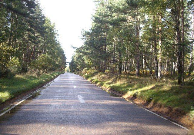 B9010 through Sheriff Moor Wood