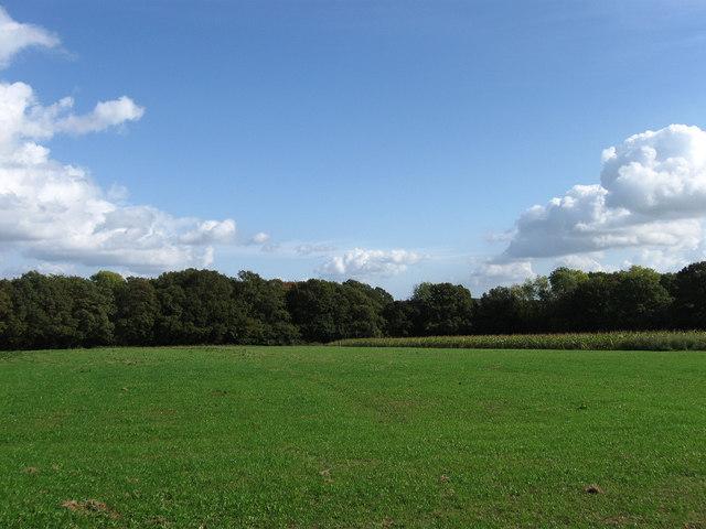 Hovel Field