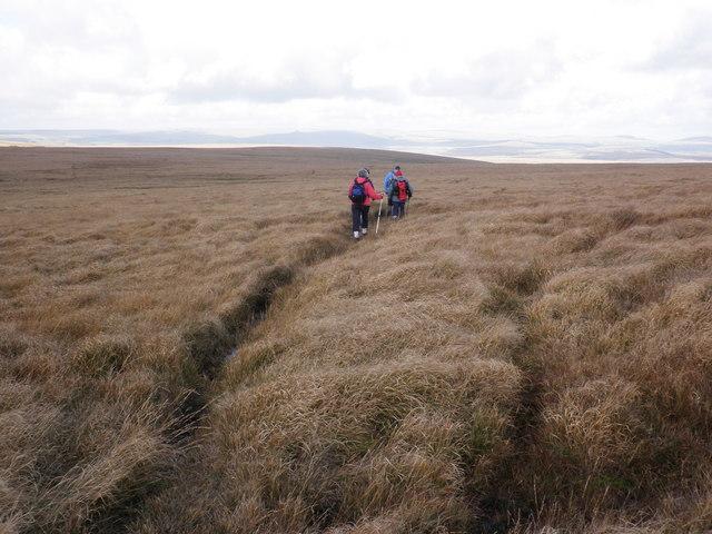Track, across Avon Head