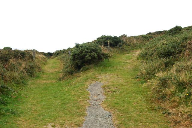 Tracks divide near Upper Porthmawr Farm