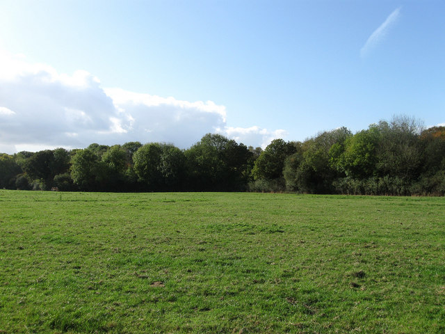 Lower Lambourne Field