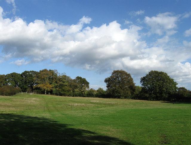 Pond Field, Plumpton Green
