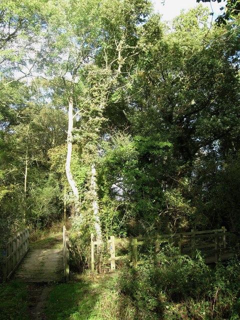 Two Footbridges, Hattons Green