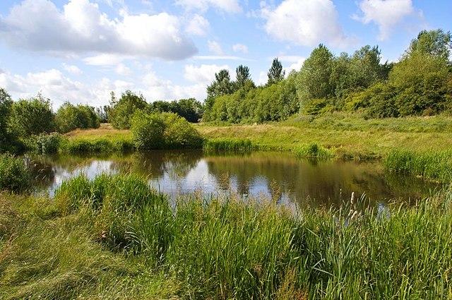 Ponds, Preston Park