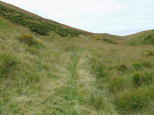Moorland at the head of Cwm Gwrach, Powys