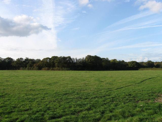 Howed Meadow