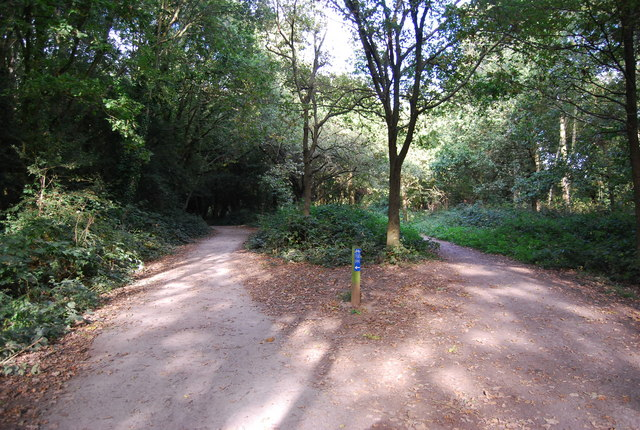 National Cycleway 12 on the left, footpath on the right