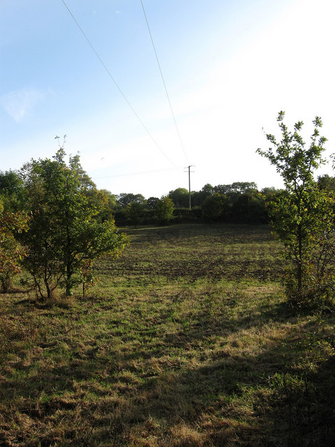 East Meadow