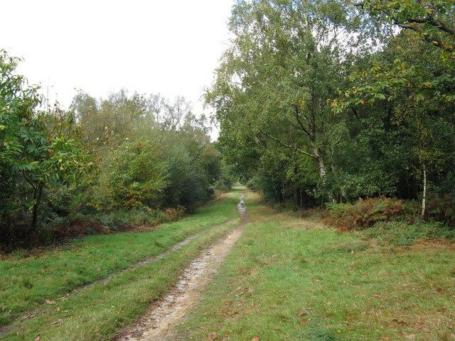 Perimeter track alongside the A22