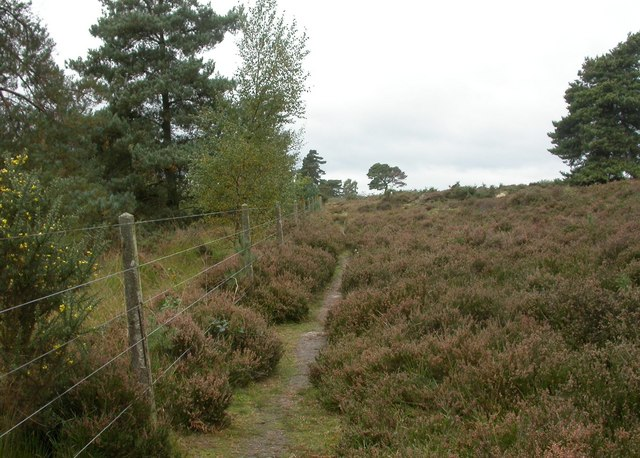 Church Moor, track