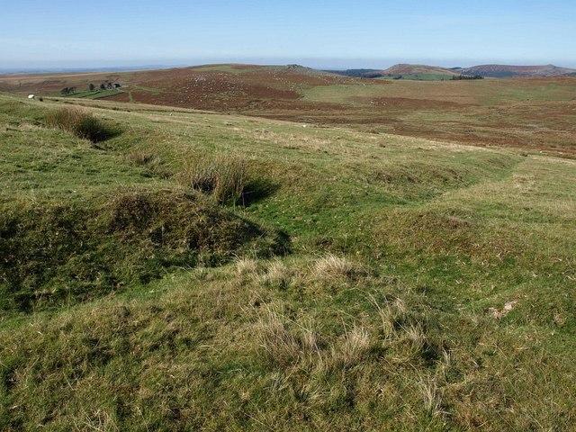 Old field boundaries near Shavercombe Tor