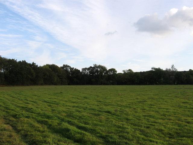 Flat Mead