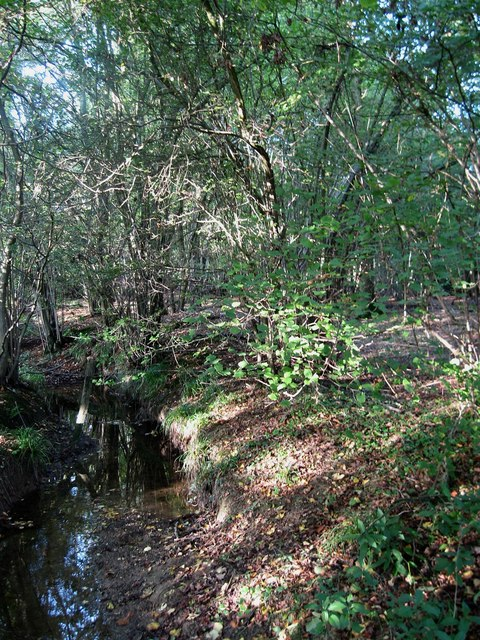 Stream, Ruffets Wood