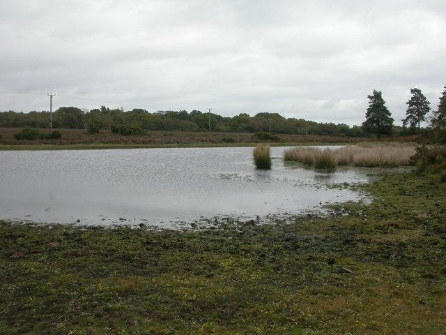 Church Moor, pond
