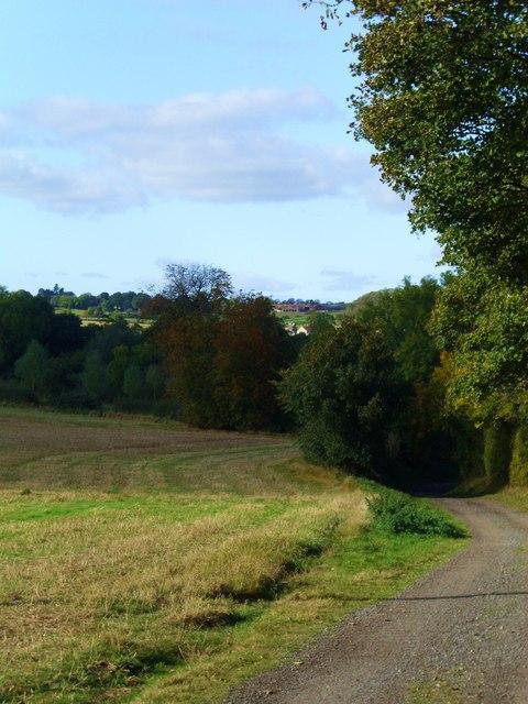 Green Lane near Burton Leonard