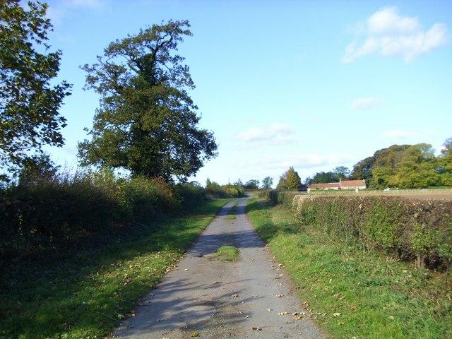 Green Lane, near Burton Leonard