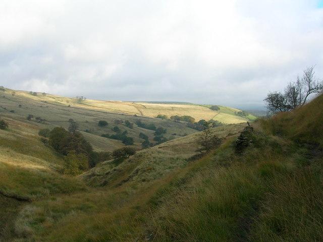 Upper Musbury Clough