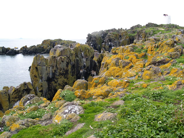 Cliffs and South Horn at South Ness at Isle of May