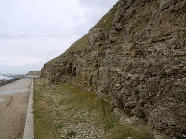 Cliffs of magnesian limestone, Grangetown promenade
