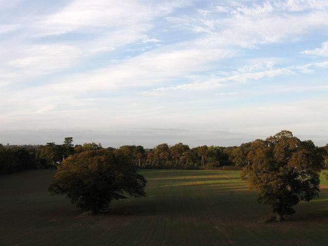 Banky Field