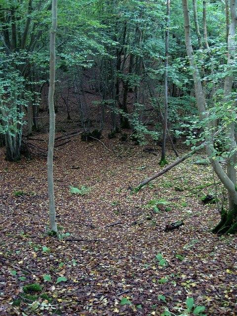 West Wood