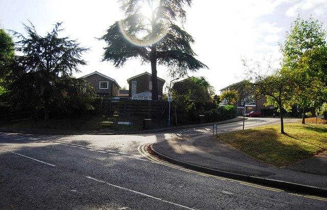 Tulip Tree Close & Waterloo Rd junction