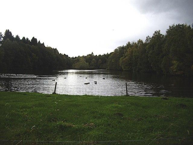 Raffpark lake