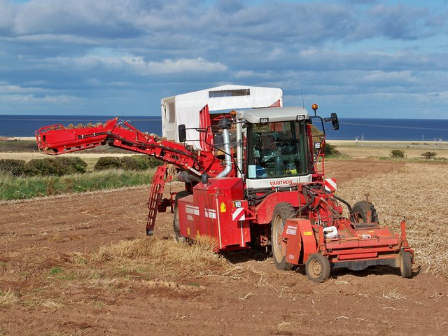 Grimme Varitron 220 Self-propelled Potato Harvester