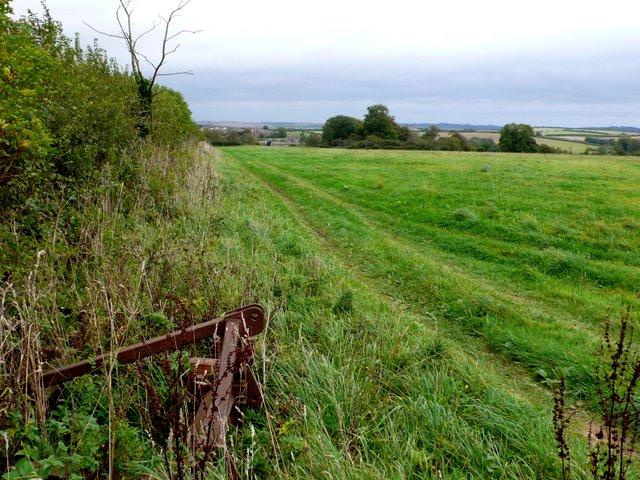 Fields near Milborne St Andrew