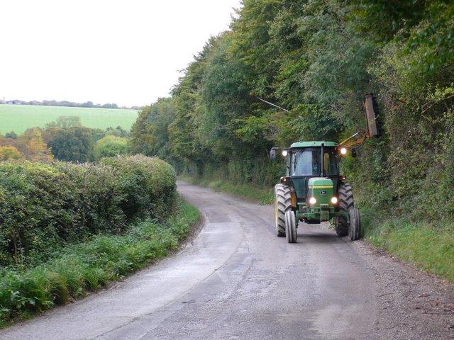 Hedge Trimming near Milton Abbas