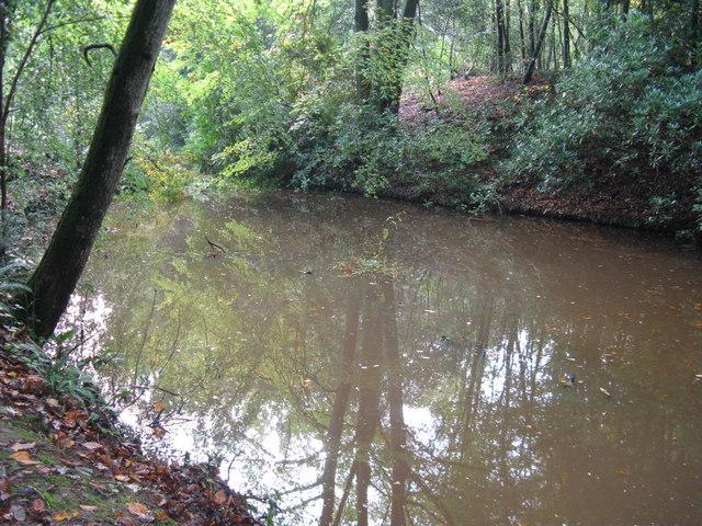 Pond near Dovecote Farm