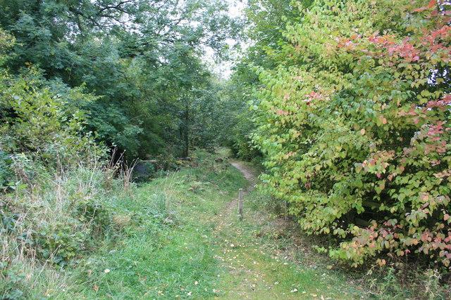 Footpath off Mill Lane