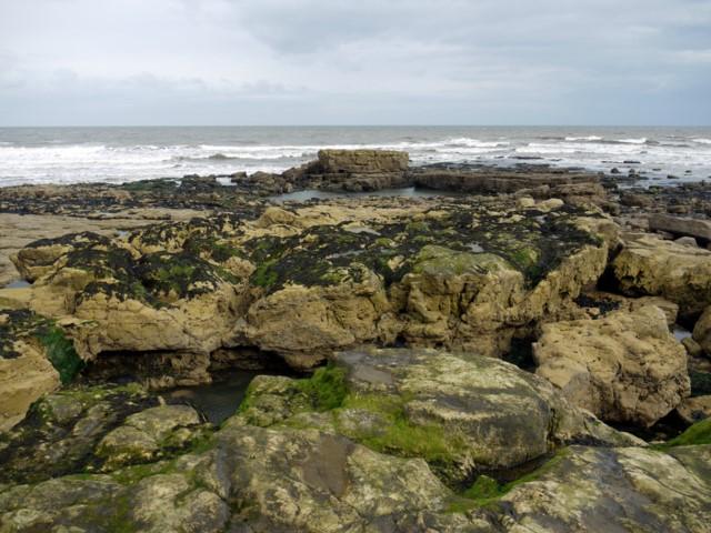Salterfen Rocks