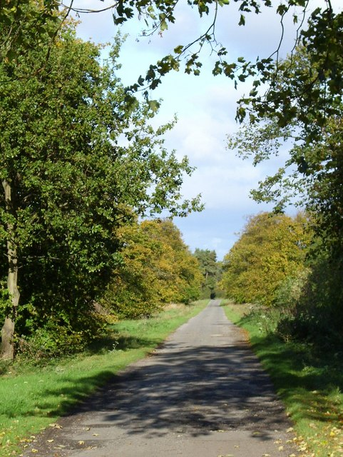 Bridleway to Roecliffe