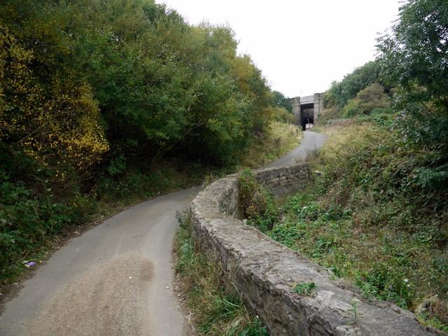 Road in dene east of Ryehope