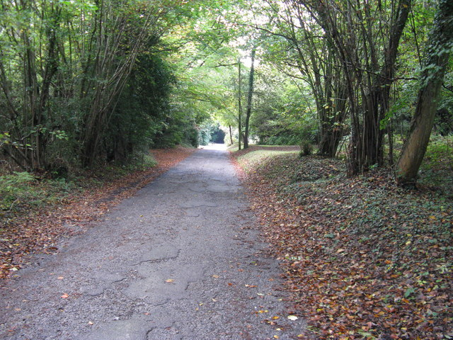 Footpath and road to Chelwood Farm