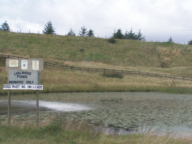 Coalwater ponds, Llanelly Hill